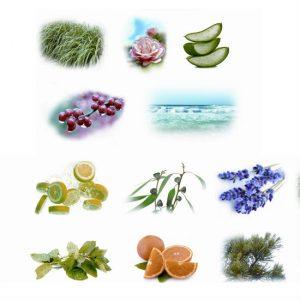 aromas-difusores