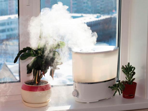 Todo lo que debes saber sobre el humidificador